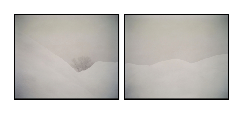 peter_kostrun_at_the_moment_2011_crow_65x80cm